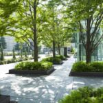 Tree dripline Coverings läpäisevä istutusalueen reunus maisemassa
