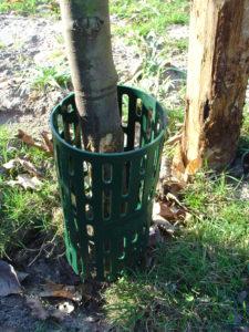 TreeProtect